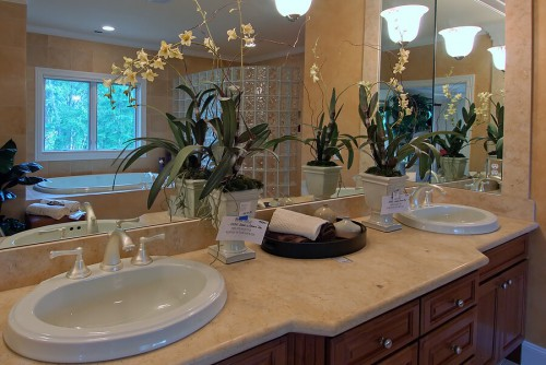Bathroom Refinish Vanity Counter With Tub